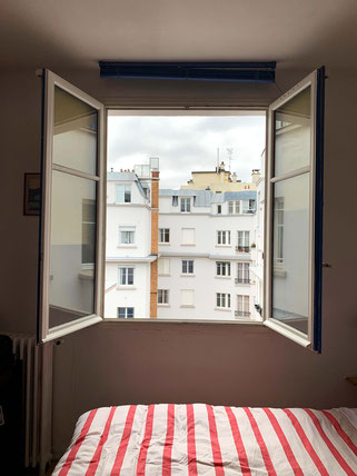 view out of window in Paris