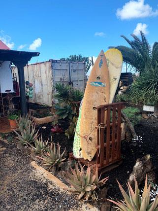 Surfboards at Viva Fuerte