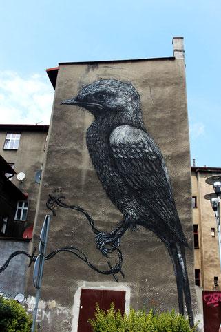 bird art by ROA in Katowice