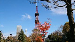 JimdoCafe札幌大通は札幌テレビ塔のすぐ近くに位置するキャリアフィットで開催しています。