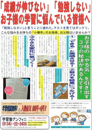 北海道新聞・朝刊折込(表)