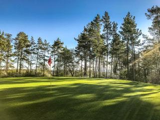 Golfspielen in Bad Münstereifel, Hotel Golf Arrangements