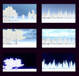 冬 雪 冬景色 雪景色 スカイドーム snow  winter skydome