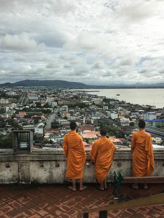 Der Blick vom Monkey Hill