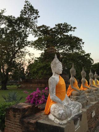 buddhas in den tempelruinen