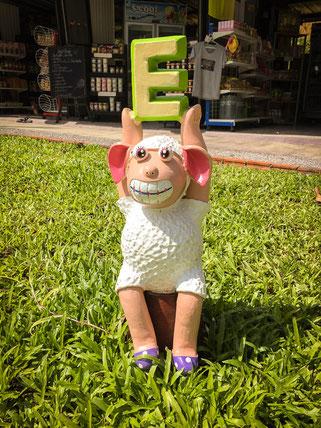 Schaf mit E