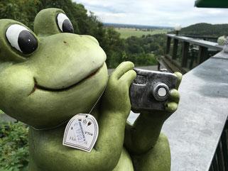 Frosch auf der Carlsburg