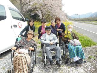 桜と菜の花の前で記念撮影