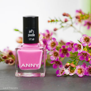 ANNY • jeff's poodle  • Urban Jungle Collection 01/2017