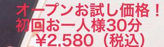 kanoko先生の初回オンライン占いを予約する↑↑