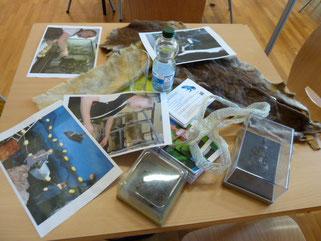 Anschauungsmaterial für den Beruf des Tierpflegers im Aquazoo
