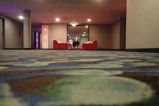 Im Tallink Spa & Conference Hotel, Tallinn