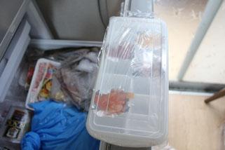 鮭いくら製氷ケース冷凍