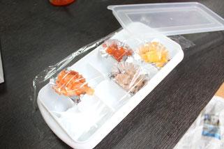 鮭いくら製氷ケース