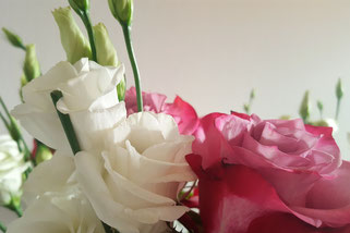 Rosen; Eustoma; Lisianthus; Zwischen den Tagen; RandomReflections; live4happiness2day; bloggingforinspiration
