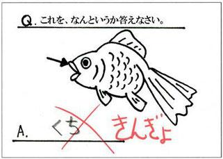 インフラ調査士試験 - 三洋検査...