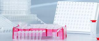 PCR & Biología molecular