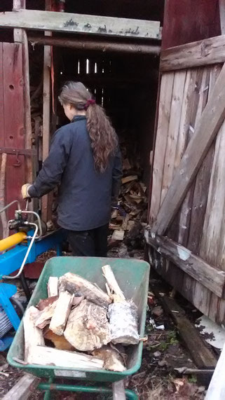 Holz machen. Denn nach dem Holz machen ist vor dem Holz machen ...