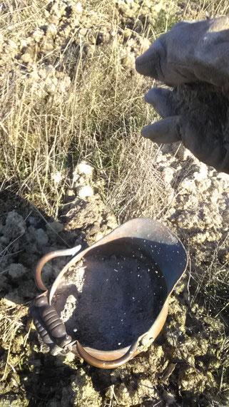 Die Asche aus unserem Kamin wird hervorragender Dünger auf dem Acker.