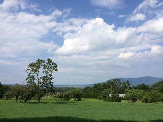 牧草地からの眺め。最高のロケーションです。