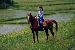 大阪から嫁いだ直子と、直子の大学時代の愛馬・秀波(養老馬として余生を当牧場で過ごした)