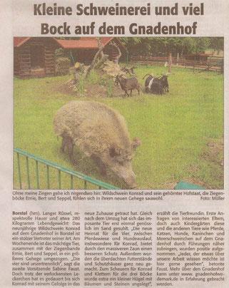 Neustädter Zeitung, Mittwoch 02.06.2010