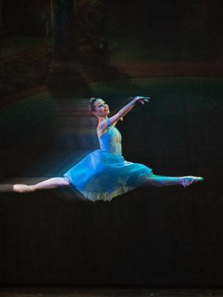 7 сентября - балет -Гала-концерт - Шедевры мирового балета, Театр русского балета им. А. Павловой - Питер-Афиша 1