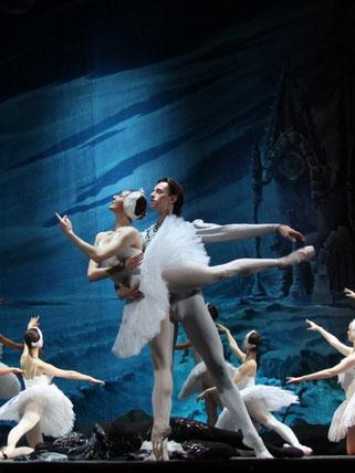 25 сентября - Балет. Лебединое озеро.  Театр русского балета им.А.Павловой - Питер-Афиша
