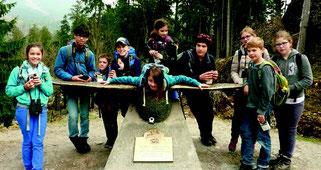 Sturnus, Natur- und Vogelschutzverein Küttigen Rombach