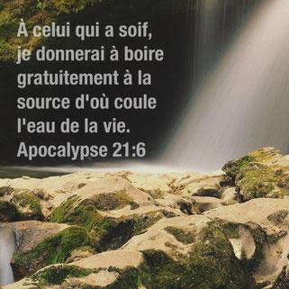 La nouvelle terre composée d'une nouvelle société d'humains soumis aux principes divins bénéficiera gratuitement des effets de l'eau de la vie. A celui qui a soif, je donnerai, moi, à boire gratuitement à la source d'où coule l'eau de la vie.