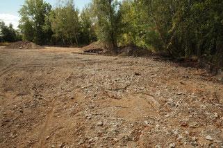 Verstoß gegen das Bundesnaturschutzgesetz: Durch Erdarbeiten zerstörter Eidechsenlebensraum. Foto: NABU Leipzig