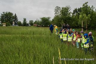 """Auf Insektensuche mit den Kindern der Kita """"Kleine Strolche"""". Foto: Ludo Van den Bogaert"""