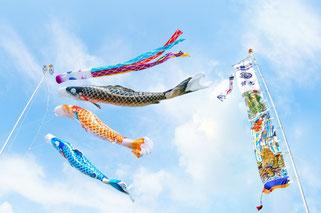 鯉のぼり 武者絵幟