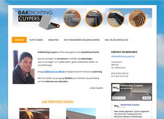 Dirk Van Bun Communicatie & Vormgeving - ontwerp - copywriting - Website Dakdichting Cuypers