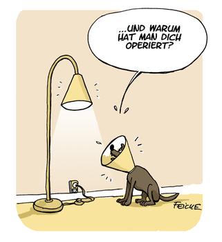 Auch operiert. © FEICKE