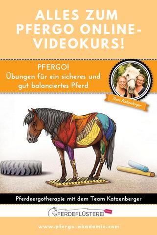 PFERGO! - Übungen für ein sicheres und gut balanciertes Pferd