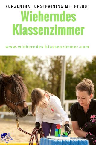 Konzentrationstraining mit Pferd! Werde zertifizierter KKP Trainer