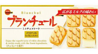 塩分の少ないお菓子 ブランチュール(シオヘラス)