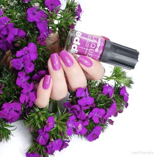 edding L.A.Q.U.E. • purple punk (295) •  S.H.A.D.E. R.E.F.R.E.S.H. 2019