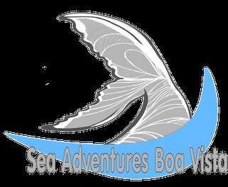 Logo unserer Webseite mit englischsprachigen Angeboten für Insel-und Bootstouren auf Boa Vista