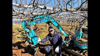 梨果樹園様のミニユンボで抜根作業