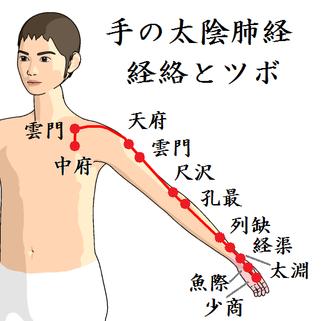 手の太陰肺経のツボの位置