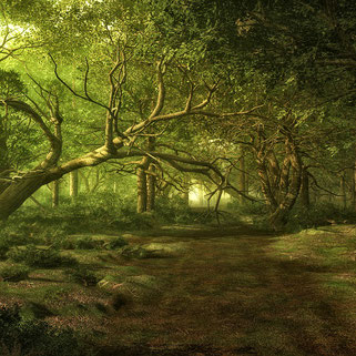 La nature est l'élément vitale pour les fées