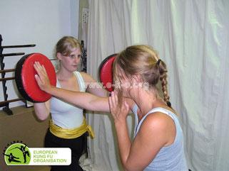 Kampfpsort Training mit Schlapolstern
