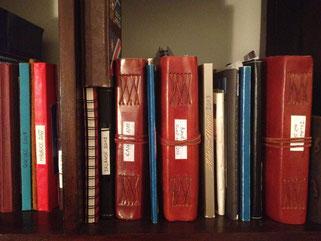 Ma bibiliothèque du petit écrivain voyageur