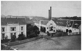 """Die """"Ratsherrenmühle"""" / spätere Papierfabrik um 1900. Die ab 1905 zwischen Villa und Fabrik verlaufende """"Lange Straße"""" (heutige Pulsnitzer Straße) gab es noch nicht.  Foto: Max Türcke. Museum Schloss Klippenstein"""