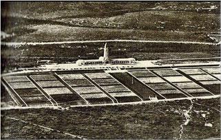 Auf dem etwa 14 Hektar großen Soldatenfriedhof in Douaumont bei Verdun befinden sich die Gräber von über 16.000 Soldaten.