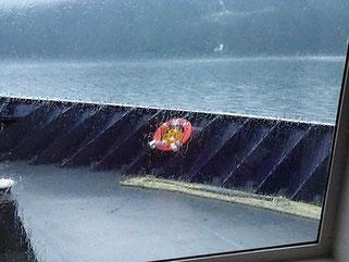 Regenachtige start van 110 Zee mijl.