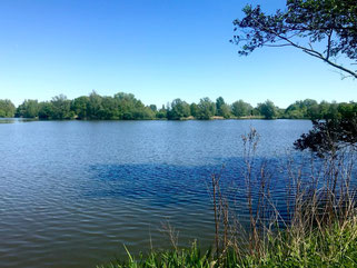 Spaziergang am Krimpelsee in Bremen-Habenhausen, Bremen Obervieland (Foto: 05-2018, Jens Schmidt)