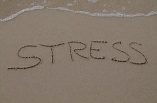 test pour évaluer mon stress pruizgarcia sophrologue